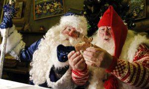 Санта клаус или Дед Мороз на дом